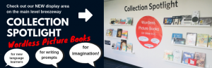 Collection Spotlight: Wordless Picture Books (or close to it)