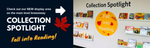 Collection Spotlight: Fall into Reading